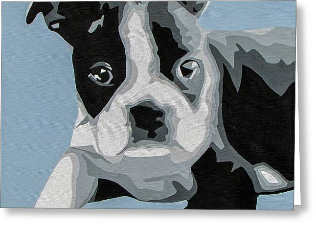 Boston Terrier Greeting Card by Slade Roberts