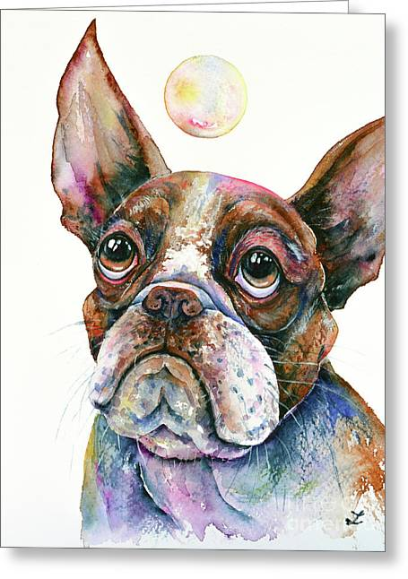 Boston Terrier Watching A Soap Bubble Greeting Card by Zaira Dzhaubaeva