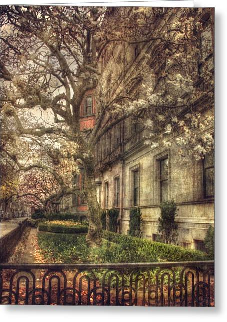 Boston Vintage Row Houses - Back Bay Greeting Card