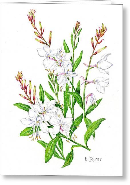 Botanical Illustration Floral Painting Greeting Card