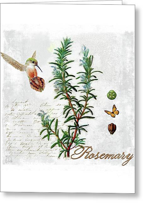 Botanical Illustration, Rosemary Herb Hummingbird Botany Greeting Card by Tina Lavoie
