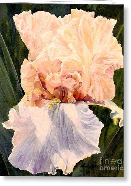 Botanical Peach Iris Greeting Card by Laurie Rohner