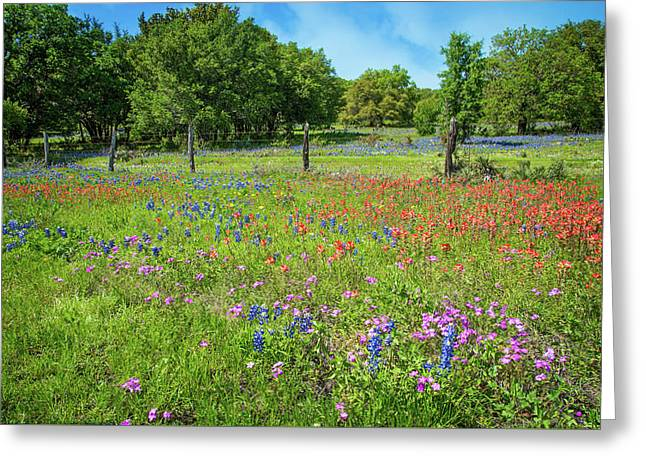 Botanical Variety Show In The Texas Hill Country Greeting Card