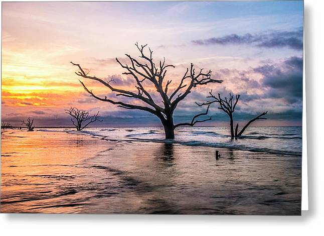 Botany Bay Dawn Greeting Card