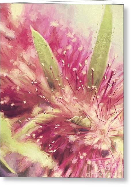 Bottle Brush Flower Species Digital Painting Greeting Card