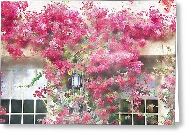 Bougainvillea 3 - Carmel California Greeting Card by Steve Ohlsen