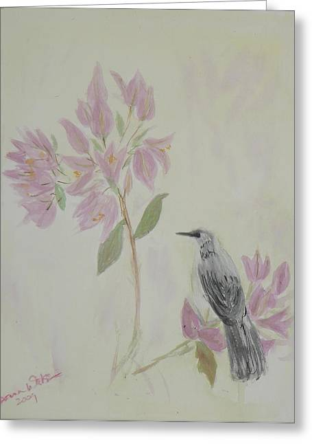 Bougainvillea And Mockingbird Greeting Card