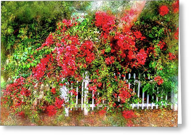 Bougainvillea Cascade Greeting Card by HH Photography of Florida