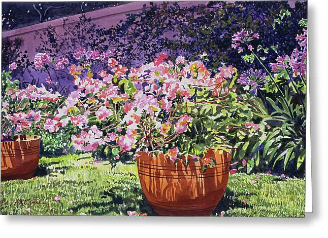 Bougainvillea Flower Pots Beverly Hills Greeting Card