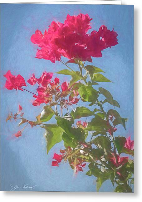Bougainvillea Morning Greeting Card