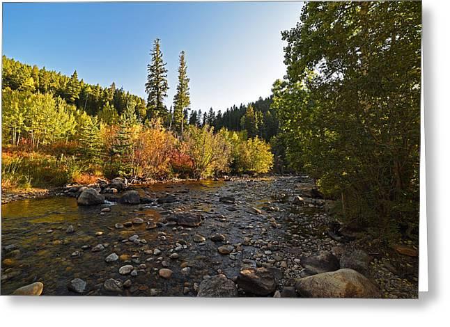 Boulder Colorado Canyon Creek Fall Foliage Greeting Card