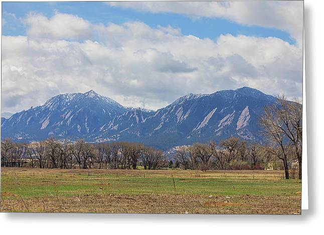 Greeting Card featuring the photograph Boulder Colorado Prairie Dog View  by James BO Insogna