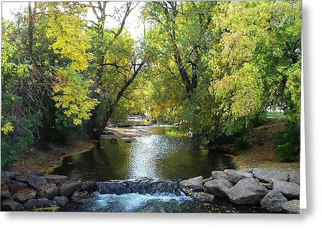 Boulder Creek Tumbling Through Early Fall Foliage Greeting Card