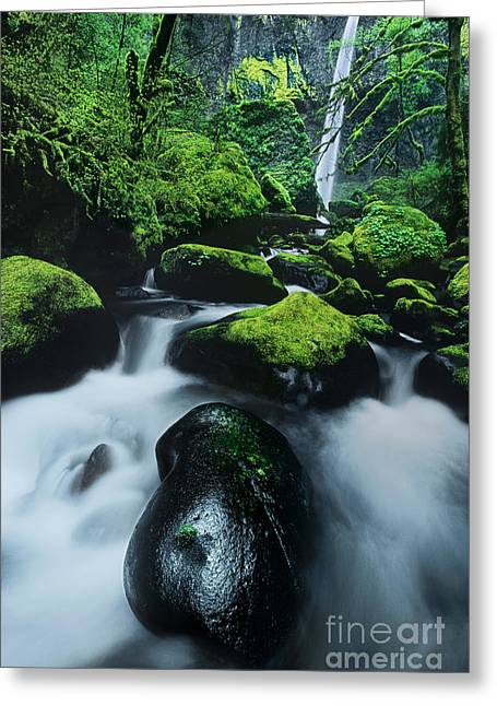 Greeting Card featuring the photograph Boulder Elowah Falls Columbia River Gorge Nsa Oregon by Dave Welling