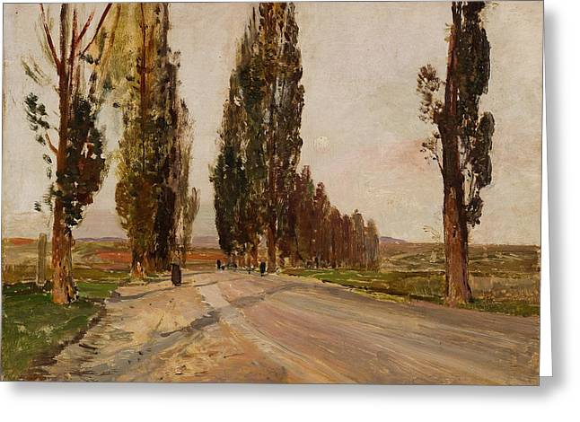Boulevard Of Poplars Near Plankenberg Greeting Card
