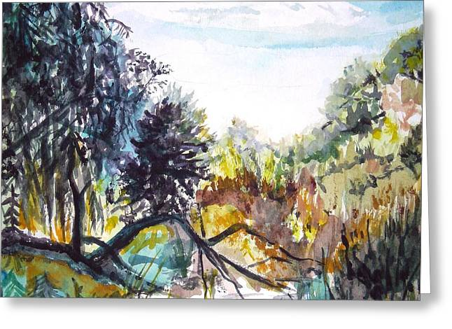 Bouquet Canyon Wash 1 Greeting Card by Olga Kaczmar