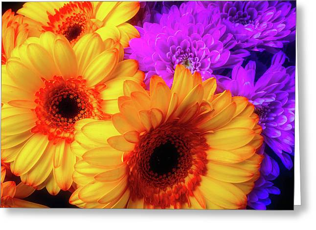 Bouquet Of Lovely Flowers Greeting Card by Garry Gay