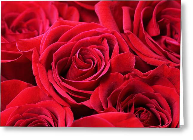 Bouquet Of Red Roses Greeting Card by Peggy Collins