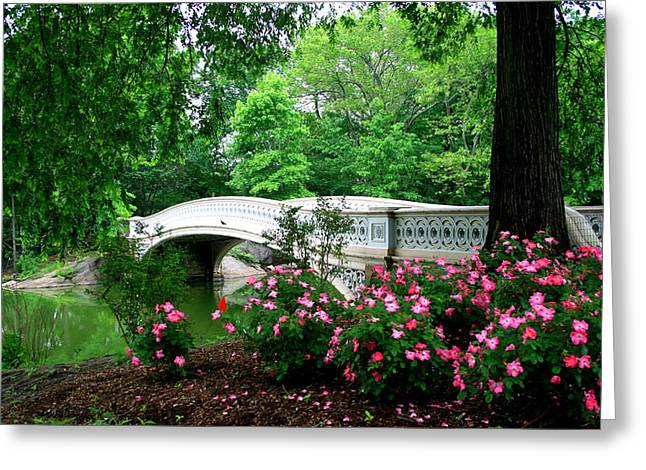 Bow Bridge In Springtime Greeting Card by Christopher Kirby
