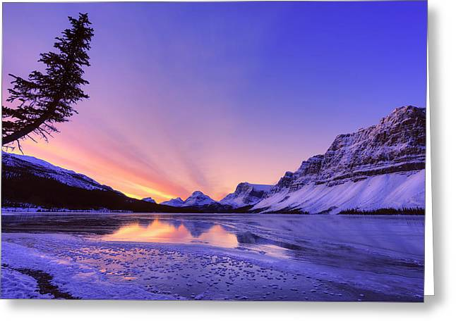 Bow Lake And Pine Greeting Card