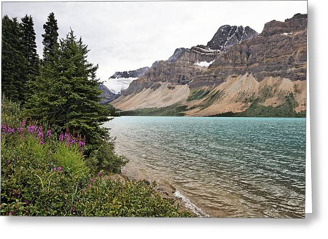 Bow Lake Scenic With The Crawfoot Glacier Greeting Card by George Oze