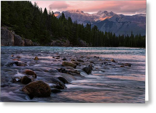 Greeting Card featuring the photograph Bow River Sunset Reflections by Dave Dilli