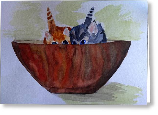Bowl Of Kittens Greeting Card by Irina Stroup