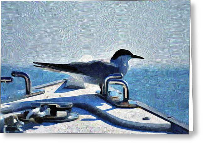 Bowrider Common Tern 1 Greeting Card
