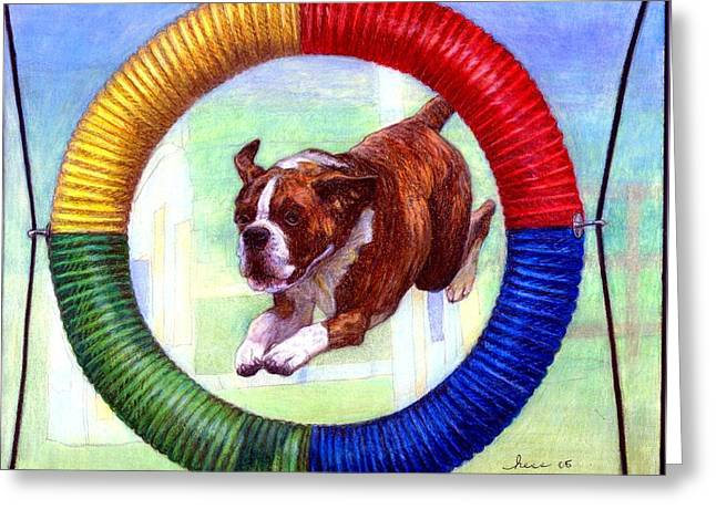 Boxer Dog Agility Class Greeting Card by Olde Time  Mercantile
