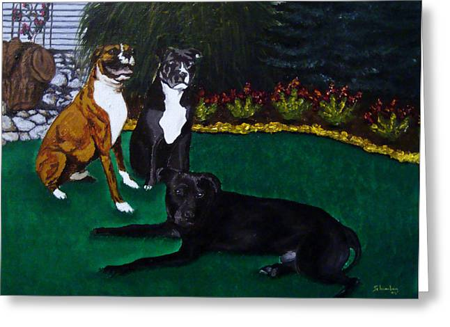 Boxer Pitbull Mix Greeting Card by Amanda Schambon