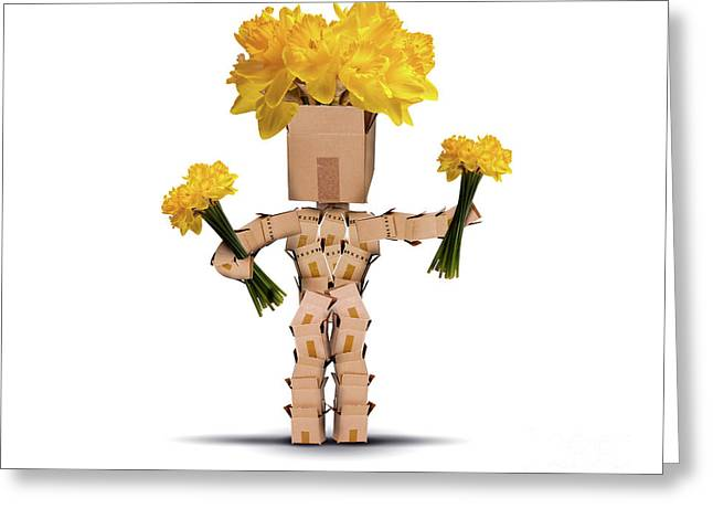 Boxman Holding Bunches Of Daffodils Greeting Card