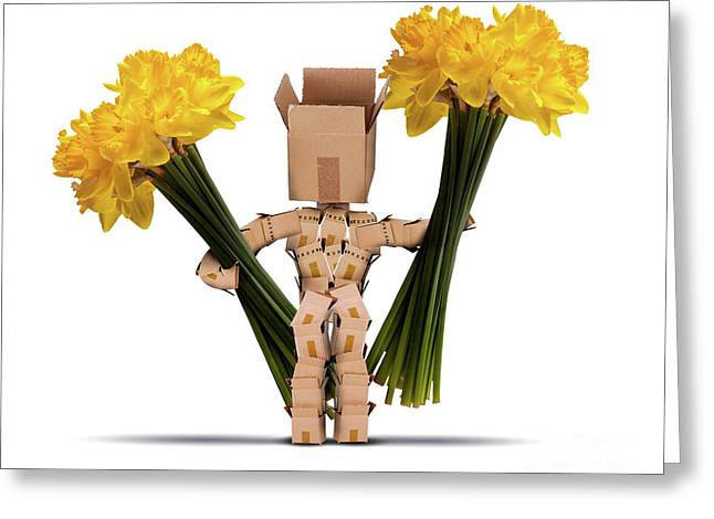Boxman Holding Large Bunches Of Daffodils Greeting Card