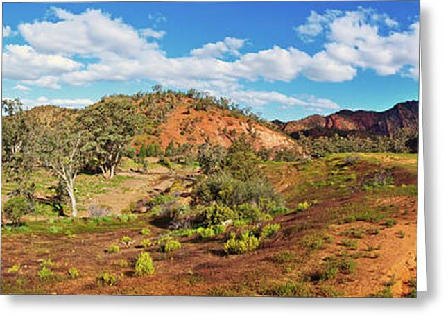 Bracchina Gorge Flinders Ranges South Australia Greeting Card by Bill Robinson