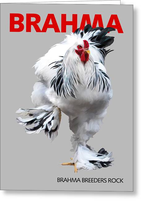 Brahma Breeders Rock Red Greeting Card