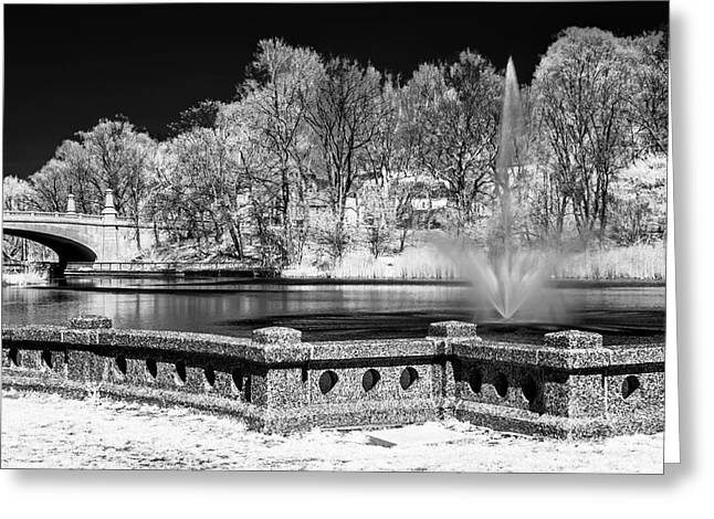 Greeting Card featuring the photograph Branch Brook Park New Jersey Ir by Susan Candelario