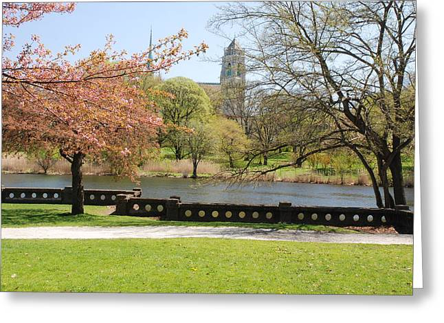 Branch Brook Park Greeting Card by William Thomas