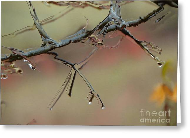 Branch With Water Abstract Greeting Card