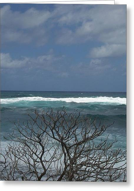 Branches Waves And Sky Greeting Card