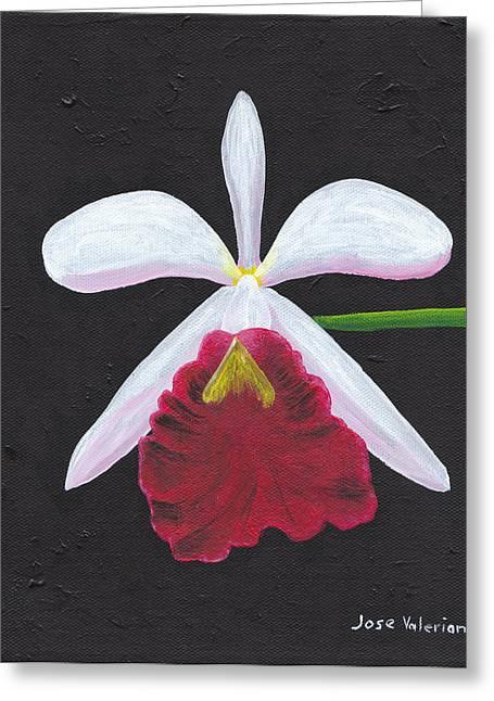 Brassalove Nodosa-rosita Greeting Card