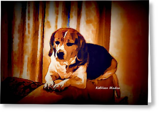 Greeting Card featuring the photograph Bravo In Brown Satin by KLM Kathel