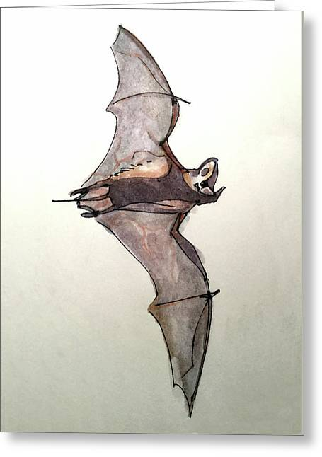 Brazilian Free-tailed Bat Greeting Card