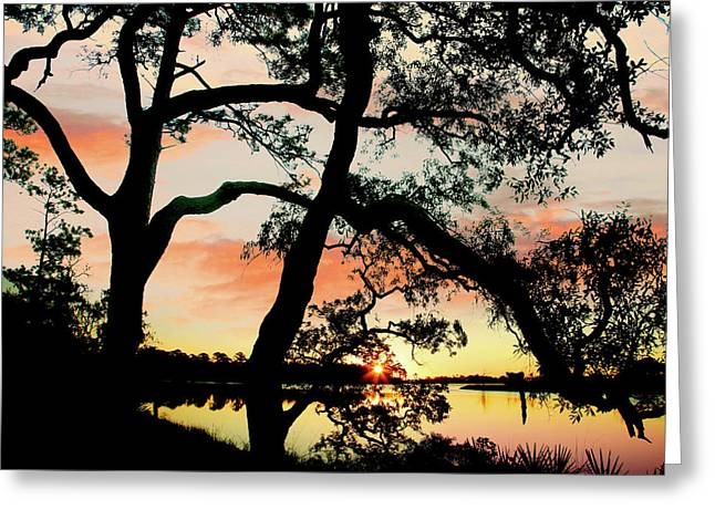 Break Of Dawn Greeting Card