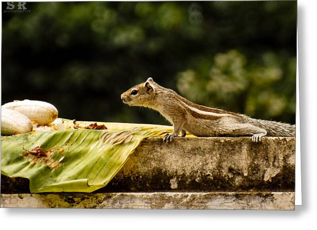 Breakfast Greeting Card by Ram Prasad