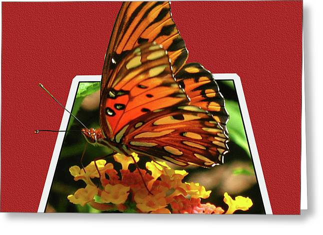 Breakout Butterfly Greeting Card