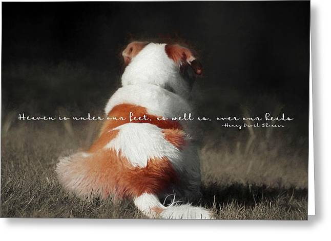 Breaktime Quote Greeting Card by JAMART Photography