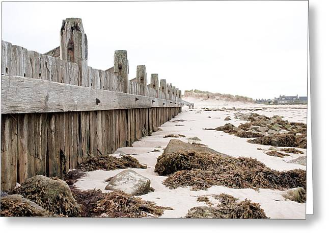 Breakwater Greeting Card by Tom Gowanlock