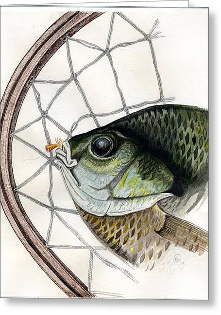 Bream And Net Greeting Card by H C Denney