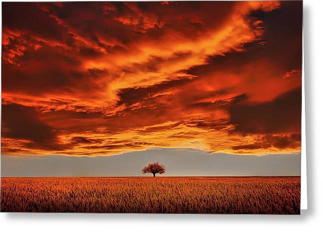 Breathtaking Sunset Sky Greeting Card by Bess Hamiti