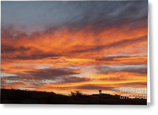 Breathtaking Sunset With Orange And Gold Splashes Of Colour Greeting Card