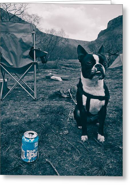 Brewdog Bull Greeting Card by Justin Albrecht